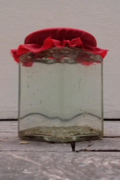Ein Schraubglas mit rotem Stoffdeckchen darauf. Darin eine leicht trübe Flüssigkeit und schmuddelige Stückchen, die zu Boden sinken.