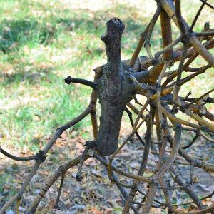 Ein Zweig aus dem eine Mistel herauswächst. In den Zweig sind Punkte und Linien eingebrannt und er ist dezent beschnitzt. Er erinnert an eine Figurine  mit vor den Bauch verschrnkten Fingern und weit geöffneten Mund. Bild verlinkt zu Arbeit 3.