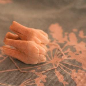 Ein sich entwickelnder Wildschweinbackenzahn auf Stoff. Direkt unter den Zahn ist ein Achteck gestickt. Auf den mintfarbenen Stoff ist weiße Schafgarbe gedruckt. Bild verlinkt zu Arbeit 24.