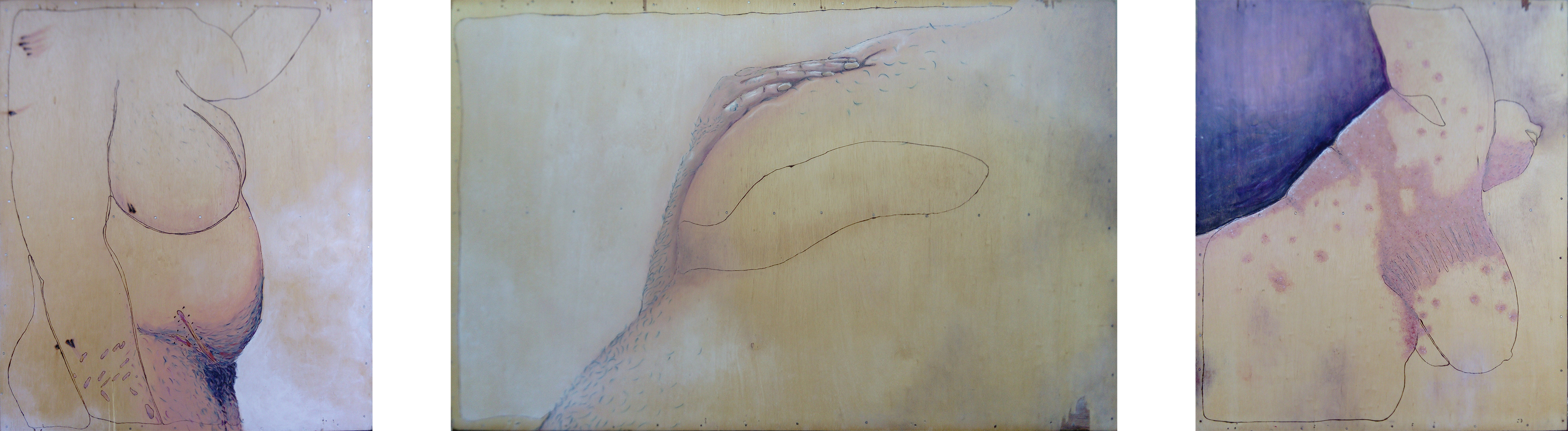 Drei Fotos von Zeichungen auf hellem Holz. Die linke Zeichnung ist annähernd quadratisch. sie zeigt Tristan Maries Rumpf im Profil. An Bauch und Armen sind Narben. Die Rechte zeichnung ist ebenfalls annähernd quadratisch. Sie zeigt Tristan Maries vorgebeugten Oberkörper seitlich von unten. Auf der Haut ist in großflächiger Ausschlag. Die Mittlere zeichung ist so hoch wie die anderen, aber sehr breit. Sie zeigt einen kleinen Teil des Rumpfes von unten. Eine Brust wird von einer Hand gehalten. Die Zeichung wirkt verschwommen und es ist etwas unklar, wo der Körper und der Hintergrund sind. Am Punkt der Berührung ist die Zeichung deutlicher ausgearbeitet.